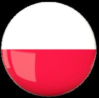 kursy polskiego dla obcokrajowców